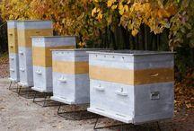 Надо купить / Все необходимое для пчеловодства