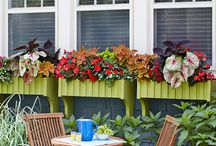 Outdoor DIY / by Diana Trotter