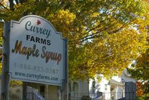 You Want to Buy Our Syrup?  Why of course you do! / http://www.curreyfarms.com/ Currey Pure Maple Syrup Farm / by Currey Farms
