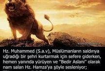Hz Hamza