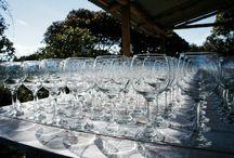 Wine lovers. Los amantes del vino / El placer y los secretos del vino