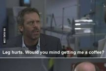 House = Sass King