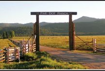 Five Dot Ranch News / Check out the latest news articles, monthly newsletters, and more about Five Dot Ranch.