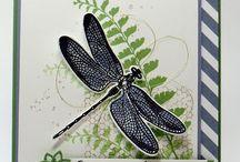 Stampin up, dragonfly dreams