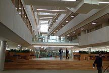 i/o gebouw Nijmegen / In het i/o gebouw zijn de lerarenopleidingen (pabo en tweedegraads lero van het ILS) en Opleidingskunde van de HAN gehuisvest.