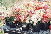Garden Time / Ideas and inspiration for gardening this Spring