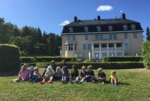 Kolmården på Villa Fridhem