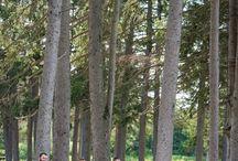 Bensons Park Hudson NH Weddings