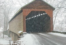 Covered Bridges / by Doug Ghering