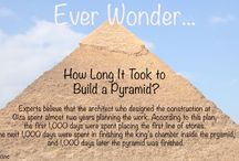 Did You Know? / Unravel Some of the Greatest Facts, Mysteries and Myths on Earth with World Book!