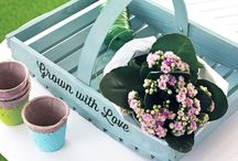 Garden Inspiration & Gifts / Brighten up the garden with stunning specially made gifts for someone who loves the outdoors.