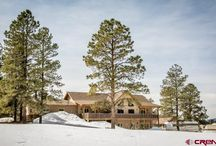 UNDER CONTRACT! Main House 584 Oren Rd., Pagosa Springs, CO 81147 / Listing Broker - Stephanie Erickson This contemporary  mountain home with an additional separate guest home is just waiting for its next owners!