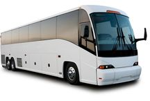 Cruise Shuttles to Port Canaveral