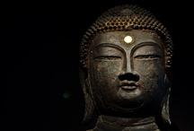 The way of Buddha / by gorekun