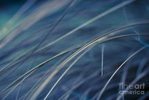Abstract Art / Abstract images
