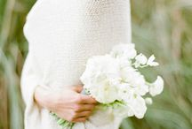 """Une jolie plante & des fleurs /  """"Papillon, ce billet doux plié cherche une adresse de fleur."""" Jules Renard"""