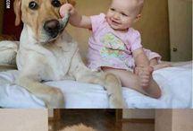 gyerekek és állataik