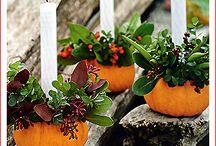 Őszi dekor / Őszi dekorációs tippek
