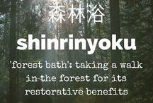 Língua japonesa