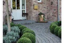 Hauseingang und Garten