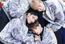Seventeen vocal unit