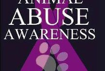 STOP ANIMAL ABUSE NOW!!!!! / Anyone can join this board they just have to ask!! Only pin things that are relatable!!! This is a serious board!!! If you want to join this board comment on one if the pins