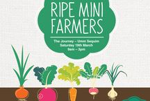 Ripe Mini Farmers / Mini Farmers get to pot a plant and nurture their own little Ripe Organic Veggie Patch. There are lots of other fun things on the day including an Easter egg hunt and for the Big Kiddies, we have a pop up market which is filled with irresistible treats!    Ripe Mini Farmers at The Journey Saturday, 19th March 2016 from 9am-3
