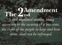 Guns and the 2nd Amendment Decals / Right to bear arms quotes, don't tread on me decals, funny gun quotes, 2nd amendment rights, and firearm stickers.