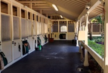 EQUINE PROPERTY PROJECT