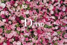 Flores impresionantes