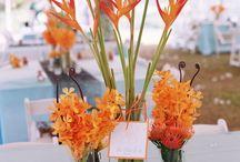 flowers for pj / by Lisa Fotheringham