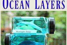 Tanya Ling Ocean creatures