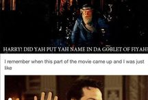 Youre a lizard Harry