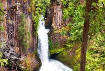 Awesome Water Fall's