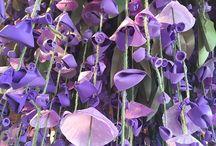 Logó virágok