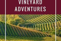 Vineyard Travel