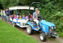 Family Holiday Ideas / Ideas for family holidays in the UK and further afield