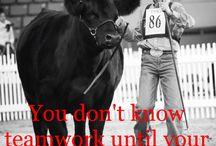 Ranching Families