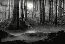 If I Had A World Of My Own... / Welcome To My Wonderland... / by Natasha Santiago-Velez