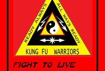 KUNG FU WARRIORS / Kung Fu moves for basic self defense. Because you don't have to be a statistic. Learn to defend yourself  and walk away alive! http://www.KungFuWarriors.com