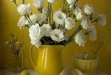 Still Life Floral Photography