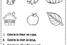 French grade 4