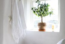 bathroom / by Lindsay Baltimore