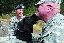 Military Companions