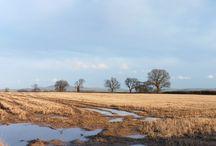 Shropshire Landscapes