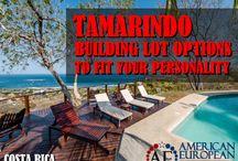 Tamarindo real estate