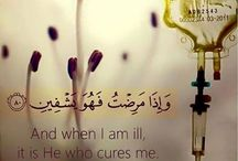Quran Quotes / http://www.dawntravels.com