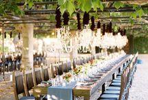 Wedding-Vineyards / Vineyard/Estate/Garden weddings  / by Jessica Aguirre