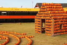 McDonald's Pumpkin Village 2015 / McDonald's Pumpkin Village is a display unlike any other! Included with your general admission to Discovery Park of America, Pumpkin Village is a display you will need to see for yourself! Discovery Park of America in Union City, Tennessee, invites you and your family to welcome fall by exploring the McDonald's Pumpkin Village!