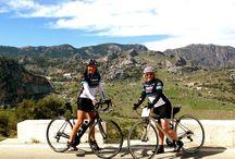 Spain Bike Tours / by Trek Travel